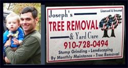 tree removal, stump grinding, tree stump removal, tree stump grinding, the most reliable tree removal in town, best tree removal in Fayetteville